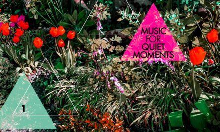 """DGM Records Launches Robert Fripp """"Music for Quiet Moments"""" Series"""
